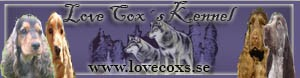 Love Cox´s Kennel